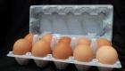 10's Egg Tray